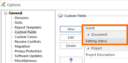 InLoox for Outlook: Custom fields