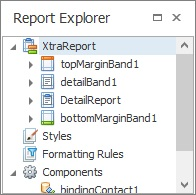Report Explorer