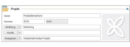 Projektname- und nummer, Abteilung, Kunde, Kategorien
