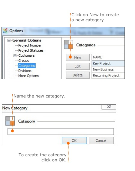 Manage the project categories in the InLoox options