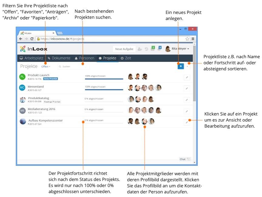 InLoox - Projektübersicht