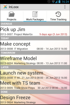 Work packages - InLoox Mobile Apps