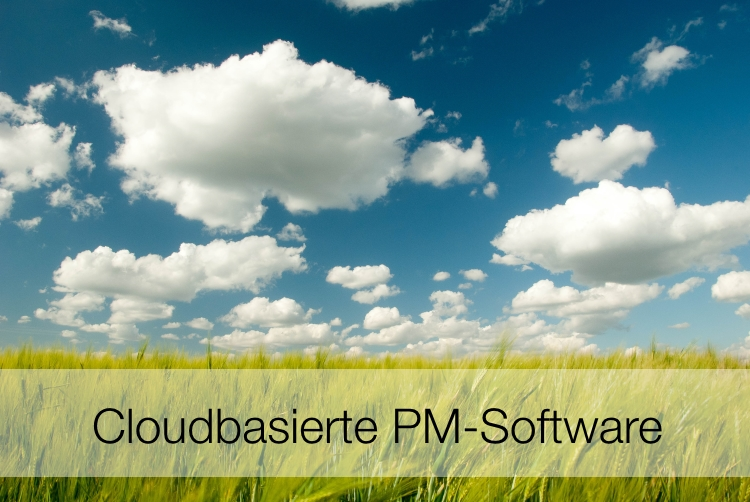 Cloudbasierte PM-Software