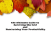 The Ultimate Guide to Surviving the Cold and Maximizing Your Productivity