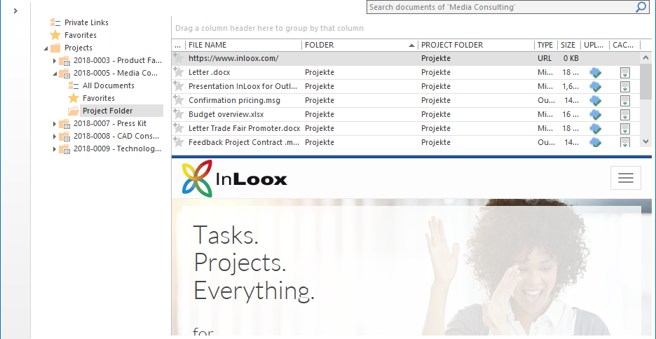 InLoox 10: Navigate through websites directly in the document preview