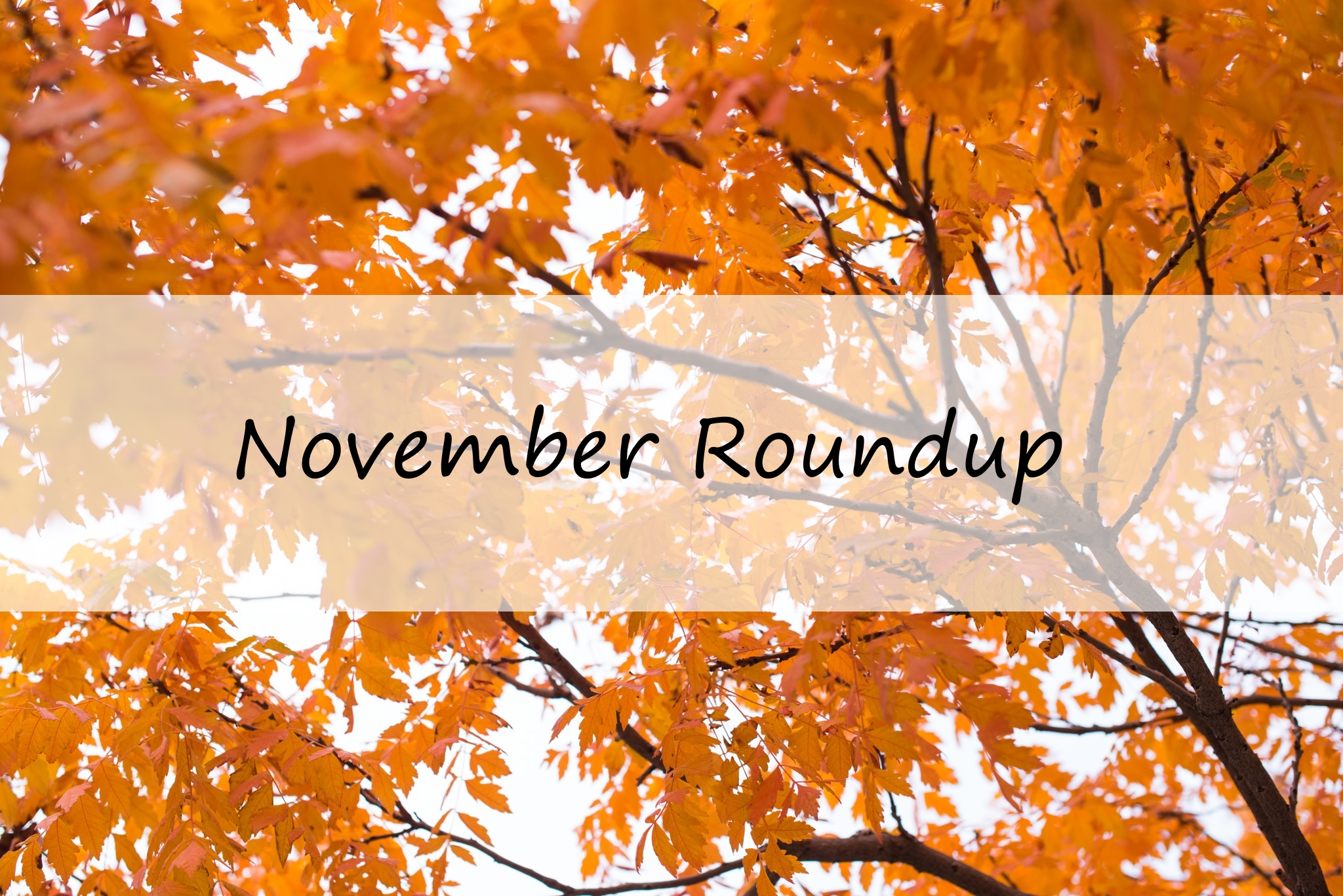 November Roundup: Project Management