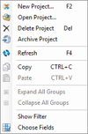 Context menu of the project list