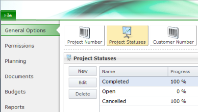Options project statuses
