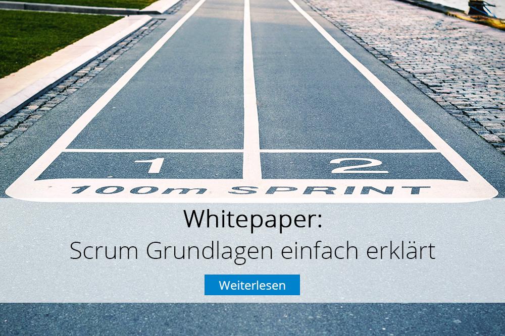 InLoox Whitepaper: Scrum Grundlagen einfach erklärt