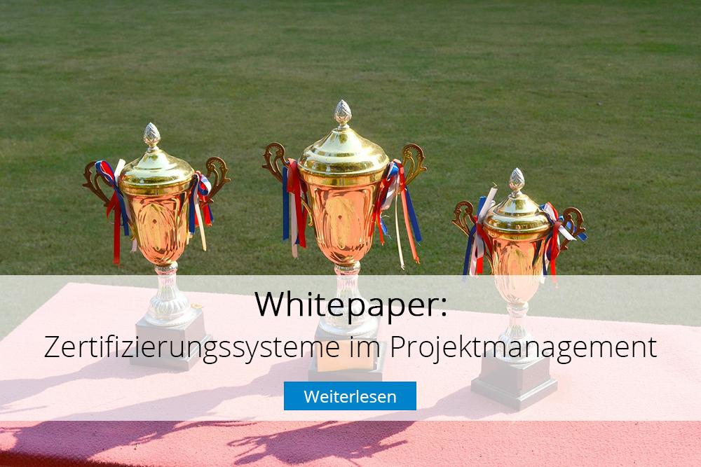 InLoox Whitepaper: Zertifizierungssysteme im Projektmanagement