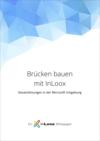 Whitepaper: Brücken bauen mit InLoox - Gesamtlösungen in der Microsoft Umgebung